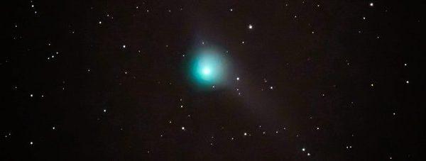 Spazio, arriva il primo gennaio la cometa con due code: Catalina visibile con un semplice binocolo